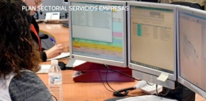 Plan de Formación del sector de SERVICIOS A LAS EMPRESAS