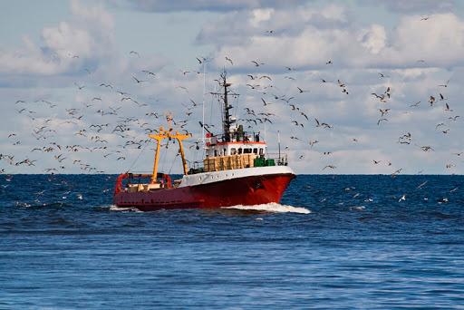 Cursos para delegados/as ambientales del mar